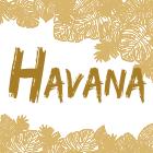 Линия HAVANA
